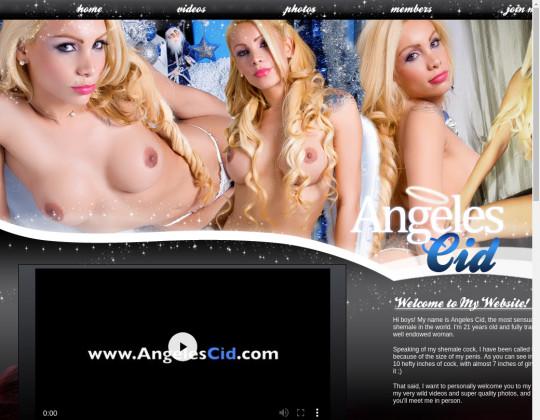 Angeles cid, angelescid.com