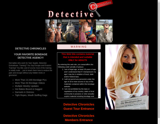 Detective chronicles, detectivechronicles.com