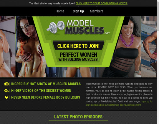 Model muscles, modelmuscles.com