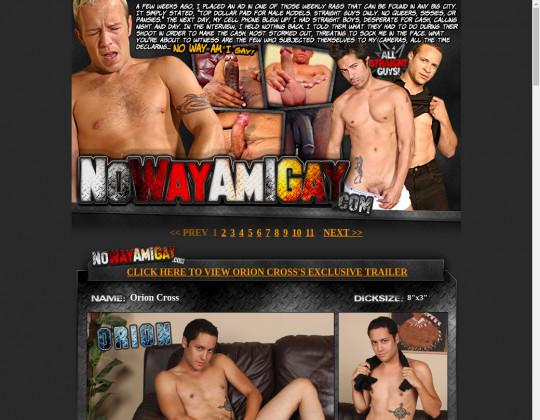 No way am i gay, nowayamigay.com