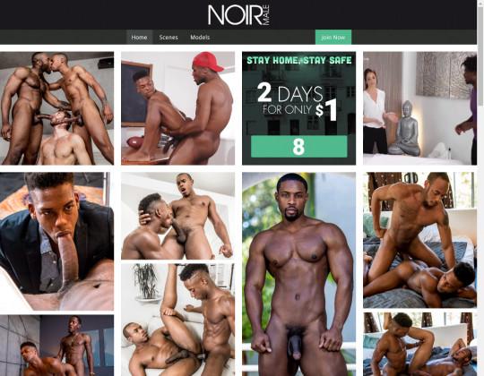 Noir male, noirmale.com